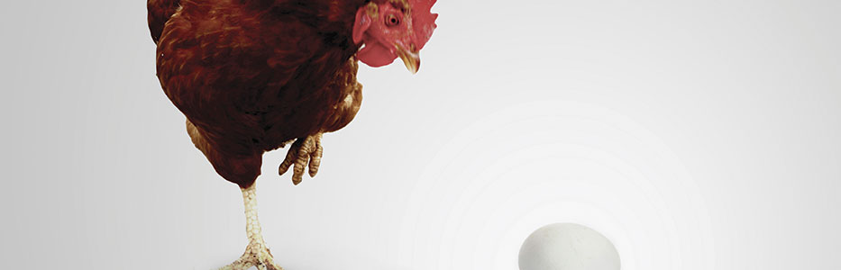Biofuels face a chicken and egg situation currently